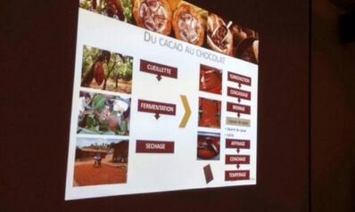 Tarif Animation Cacao Lyon