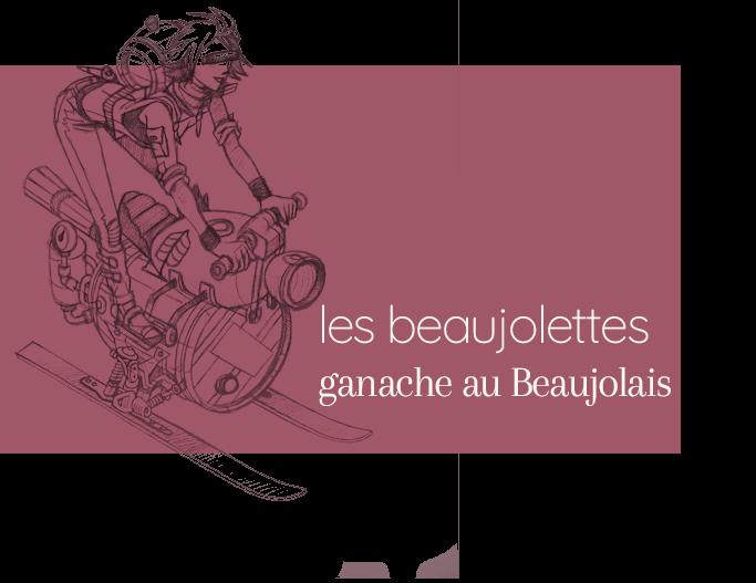 Vente en ligne Chocolat Beaujolettes