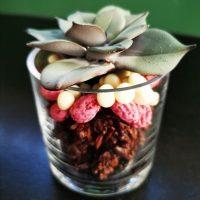 Verrine Gourmande Chocolat Pralines Roses