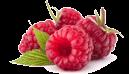 chambres d'hôtes PMR Lyon Berries